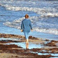 Прогулка у моря :: Ольга (crim41evp)