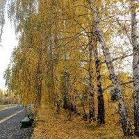 Золотая осень :: Tata Wolf