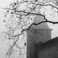 Туман окутал Детинец в Великом Новгороде серой пеленой. :: Николай Кондаков