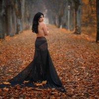 Осенний листопад. :: Анжелика Маркиза