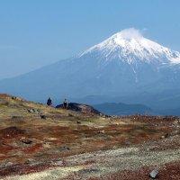 вулкан Острый Толбачик с конуса Северного прорыва 1976 года :: Александр Белов