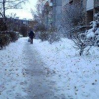 По первому снегу :: Vera