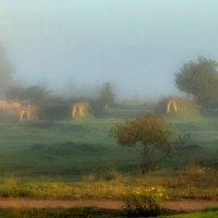 Утро в деревне. :: Виктор Грузнов