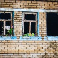 Здесь жили трое детей..... :: Ежи Сваровский