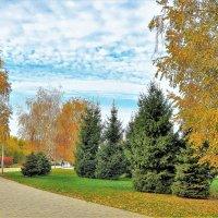 Осень :: Юрий K...