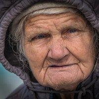 Про счастливую жизнь и сытную старость :: Олег Семенов