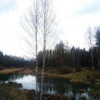 У осенней реки :: Елена Павлова (Смолова)