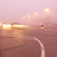 выплывают из тумана :: Владимир Зырянов