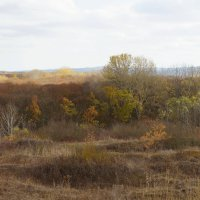 Осень на Северном Кавказе :: Наталия Сарана