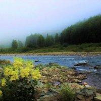 Туман над таёжной рекой :: Сергей Чиняев