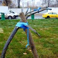 Нет ничего более вечного, чем то, что обмотано синей изолентой. :: Татьяна Помогалова