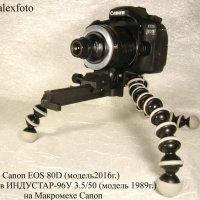 Индустар 96 У  3.5/50 на макромехе Canon :: Роман Алексеев