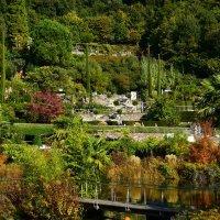 В Ботаническом саду Тироля :: Николай Танаев