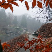 Туман в парке... :: Сергей