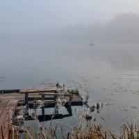 Утро туманное... :: Константин Поляков