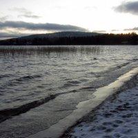 Сумерки на озере. :: Галина Полина