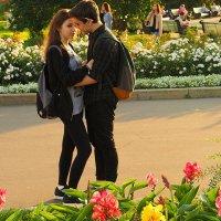 цветочные взаимоотношения :: Олег Лукьянов