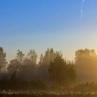 С туманом утренним :: Александр