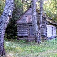 домик в лесу :: Дмитрий Солоненко