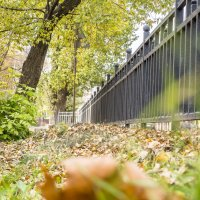 Осень :: Евгений Мухин