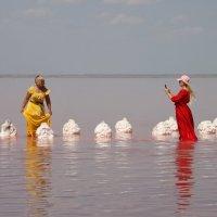 Фотосессия на озере Сасык- Сиваш :: Леонид Дудко