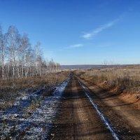 Такая вот середина ноября этого года... :: Андрей Заломленков