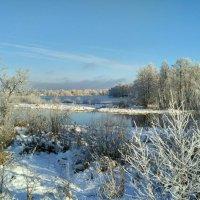 В ноябре все деревья в серебре) :: Марина Ворошко (Митьковец)