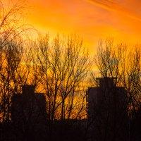 Закат в Брилевичах 17.11.18 :: Алексей Селивёрстов
