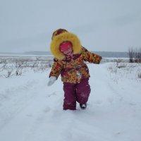 Освоение Сибири :: Светлана Рябова-Шатунова