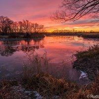 Красная река :: Сергей