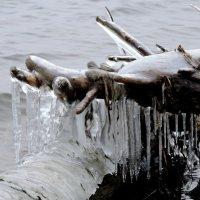 Проделки холодных волн и мороза :: Ната Волга