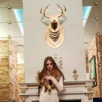 Комната Королевы :: Светлана Громова