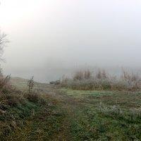 Туманная изморозь. :: Владимир M
