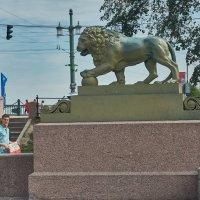 лев около Дворцового моста :: Натали Зимина