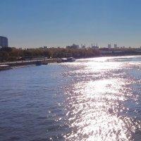 5.блики на Москве - реке :: Николай Мартынов