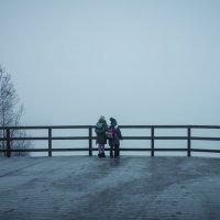 Наблюдатели за туманом :: Светлана marokkanka