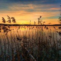 Рассвет на озере :: vladimir Bormotov