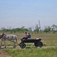 сельский транспорт :: nataly-teplyakov