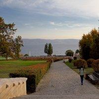 Осенний парк. Тольятти :: MILAV V