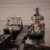 Корабельные будни :: Светлана marokkanka