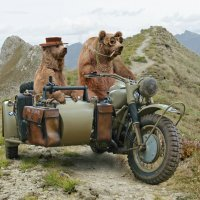 ехали медведи . . . :: Игорь Козырин