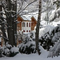 Альпы, после снегопада :: ZNatasha -