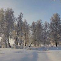 Хорошее утро-прекрасный день! :: Николай Мальцев
