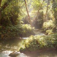 Pwe Kauk Waterfalls :: huh -