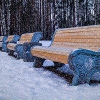 а снег идет.. :: Irina Novikova