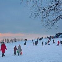 зимние гуляния :: Наталия П