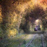 Покидаем осень... :: Denis Makarenko