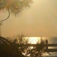 Предзакатные виды Чёрного моря :: Маргарита Батырева