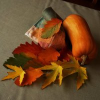 Осенний натюрморт :: София