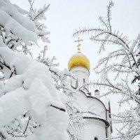 В снегах :: Сергей Малашкин